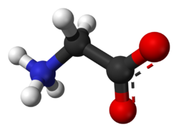Glicina como precursor del colageno