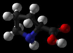 Prolina como precursor del colageno