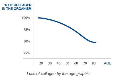 - Collagen production with the age
